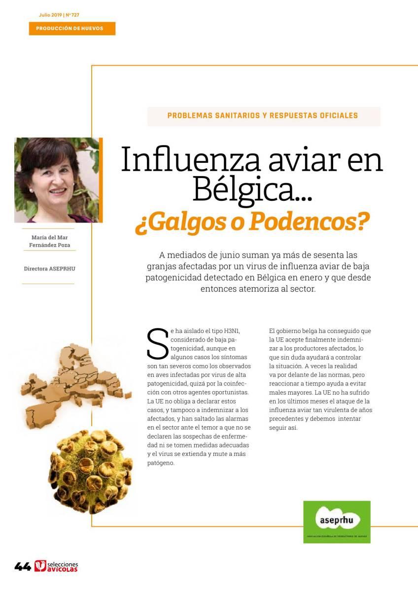 Influenza aviar en Bélgica… ¿Galgos o Podencos?