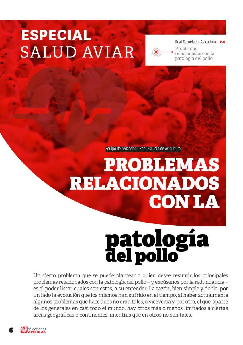 Problemas relacionados con la patología del pollo