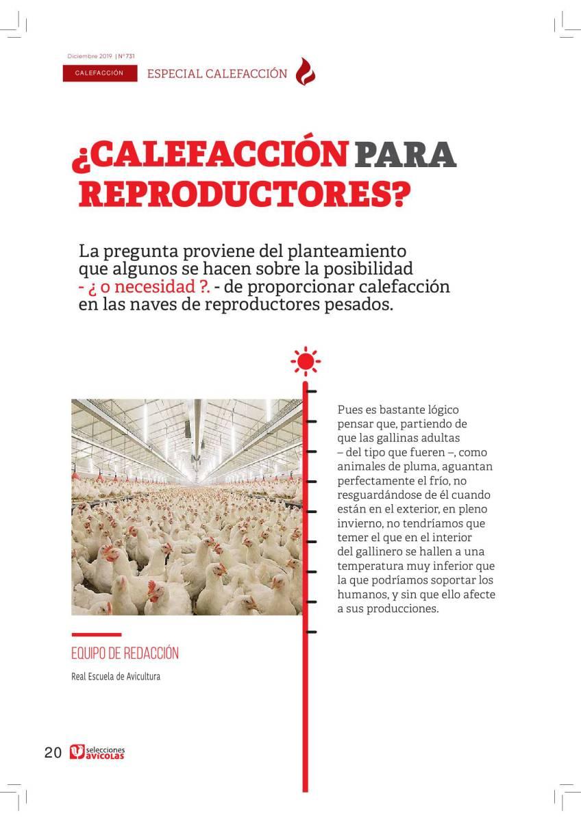 ESPECIAL CALEFACCIÓN EN AVICULTURA: ¿Calefacción para reproductores?