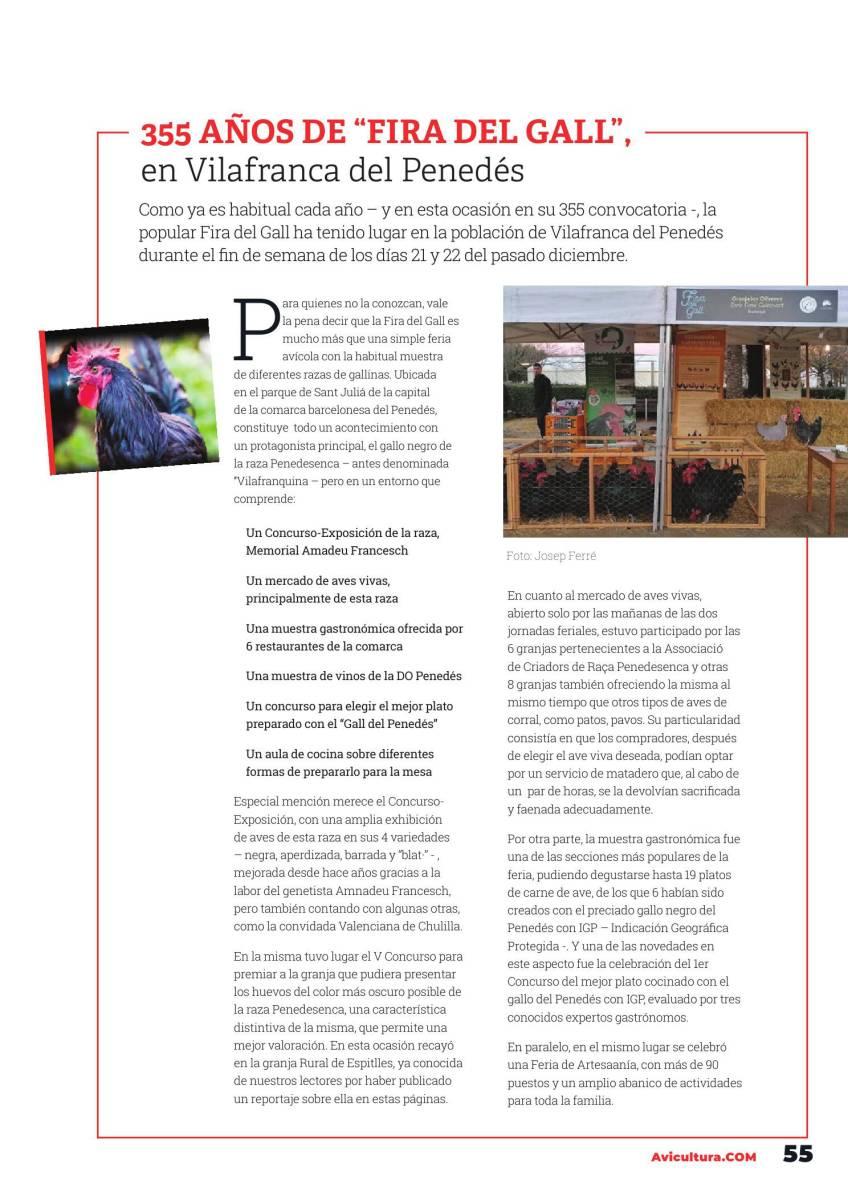 "355 AÑOS DE ""FIRA DEL GALL"", en Vilafranca del Penedés"