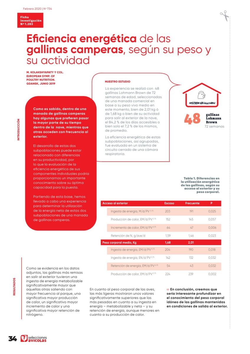 Eficiencia energética de las gallinas camperas, según su peso y su actividad