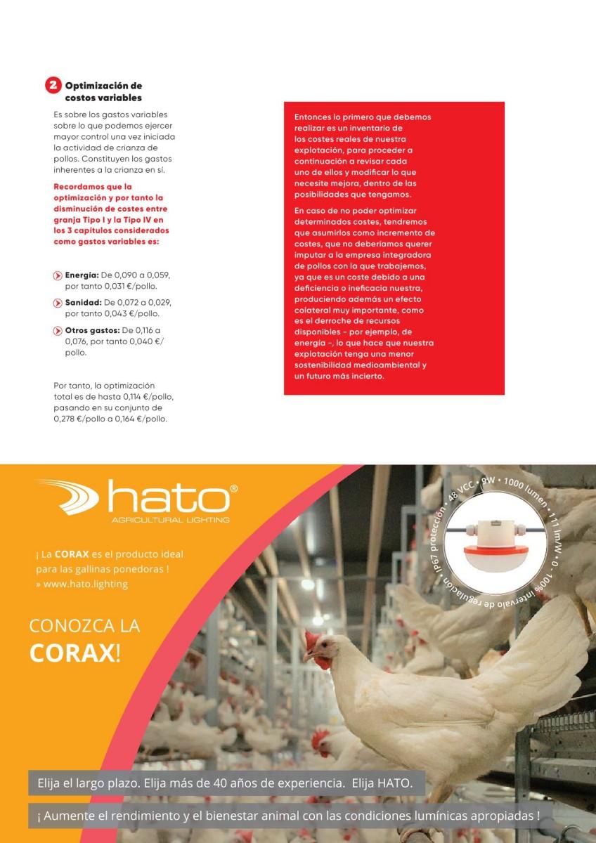 Ad Hato iluminación en avicultura