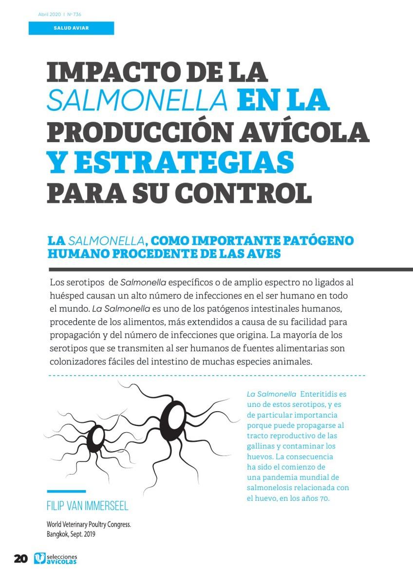 Impacto de la Salmonella en la producción avícola y estrategias para su control