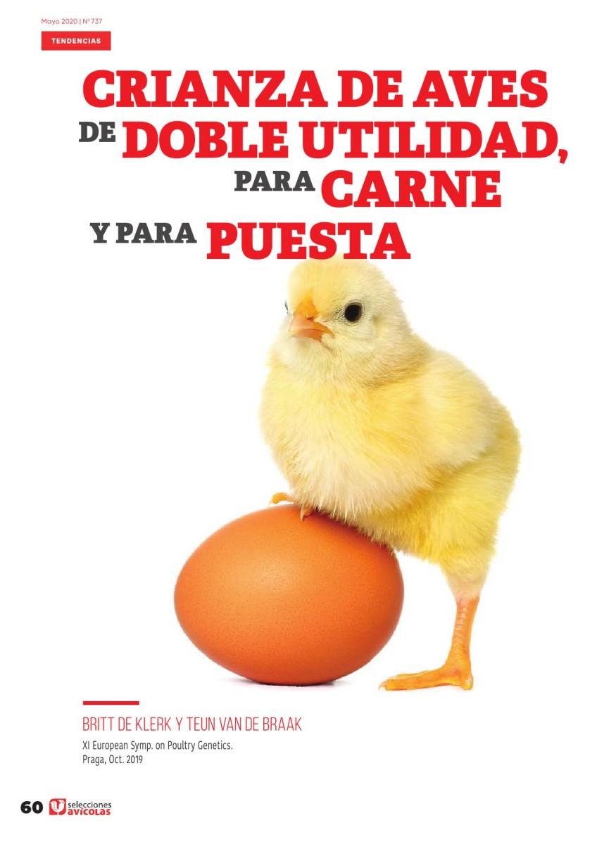 Crianza de aves de doble utilidad, para carne y para puesta