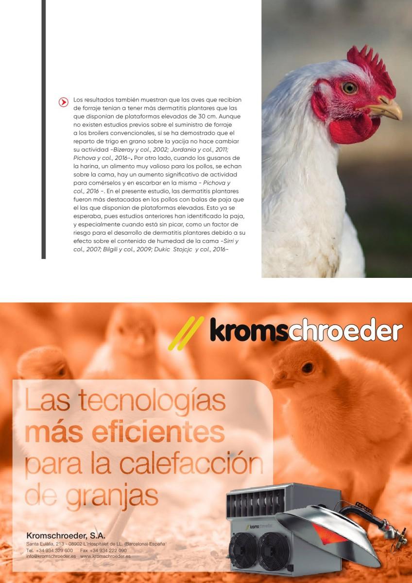 Ad Kromschoeder