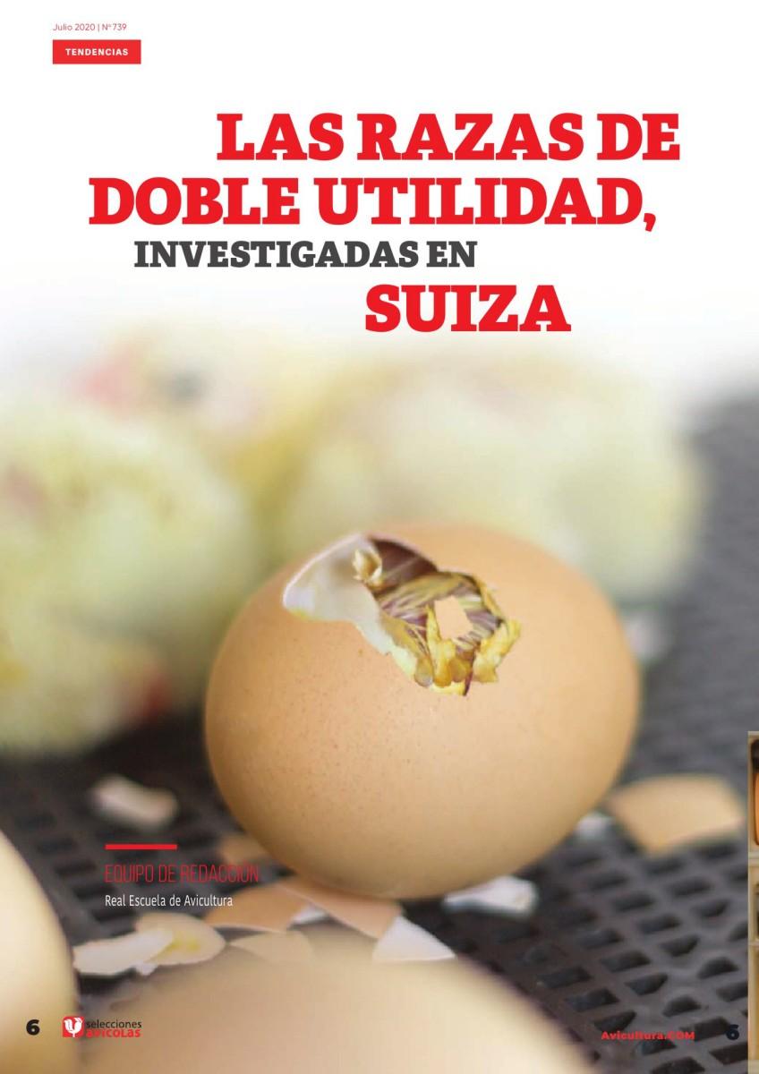 Las razas de doble utilidad investigadas en Suiza