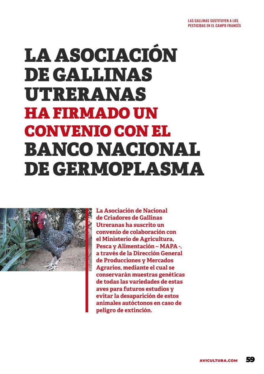 La asociación de gallinas utreranas ha firmado un convenio con el banco nacional de germoplasma