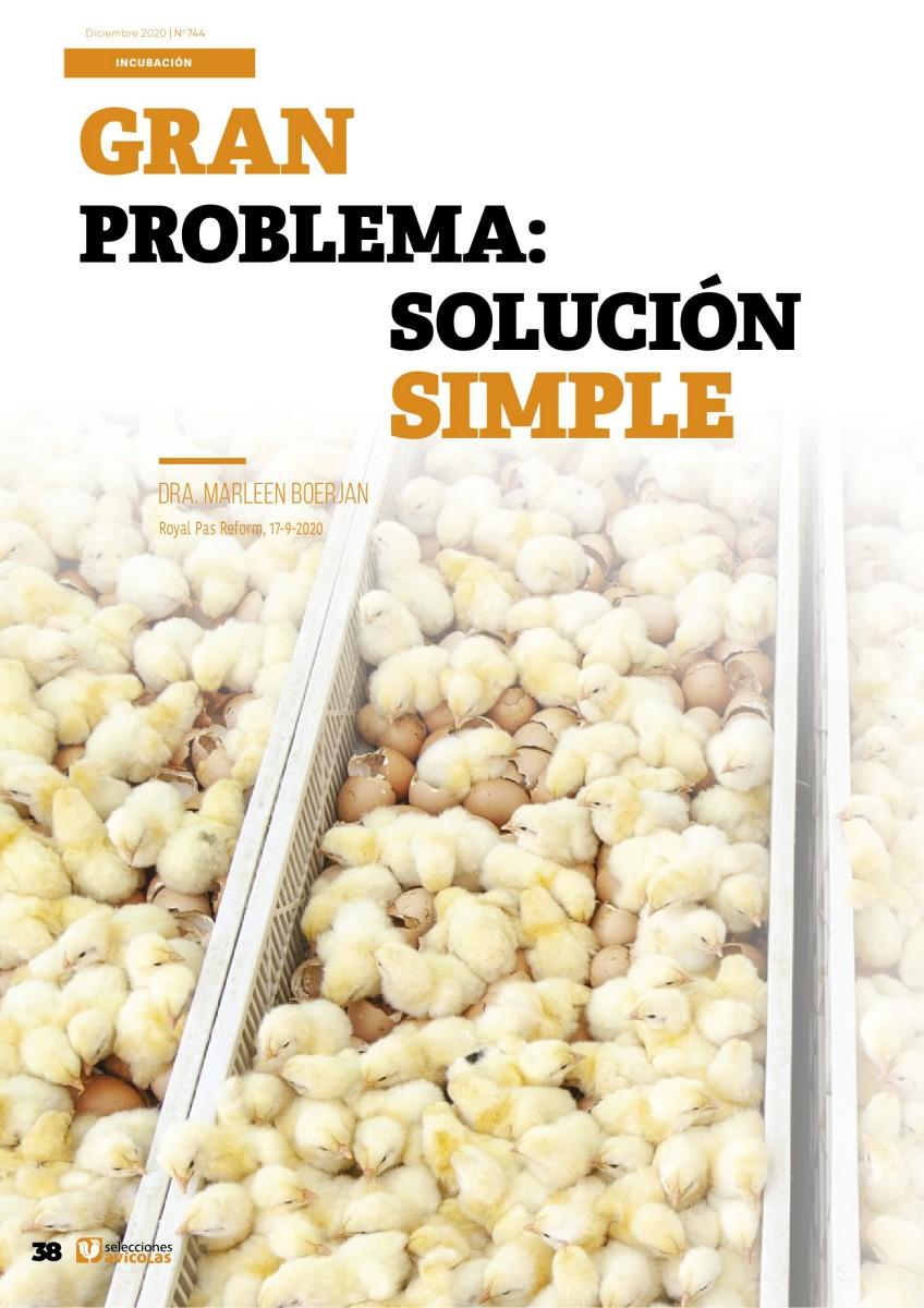 Gran problema: solución simple