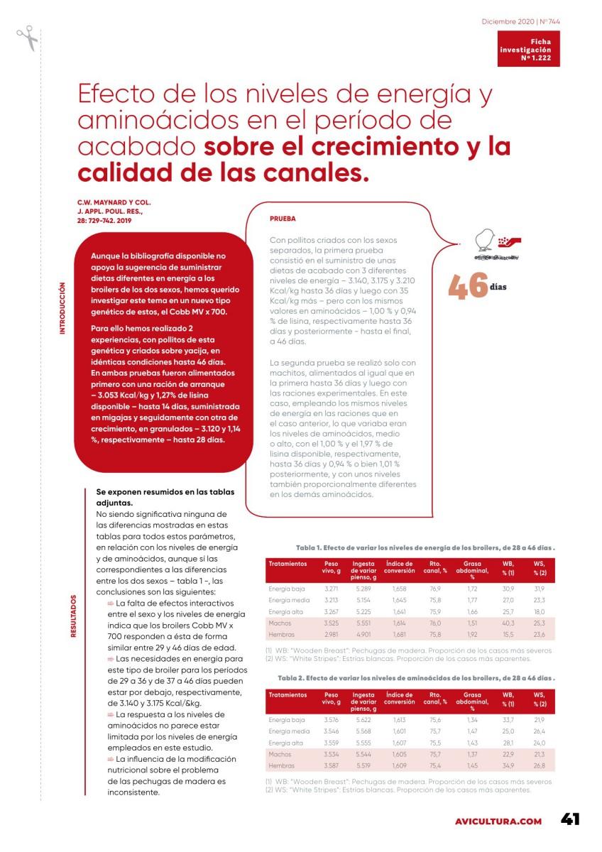 Efecto de los niveles de energía y aminoácidos en el período de acabado sobre el crecimiento y la calidad de las canales