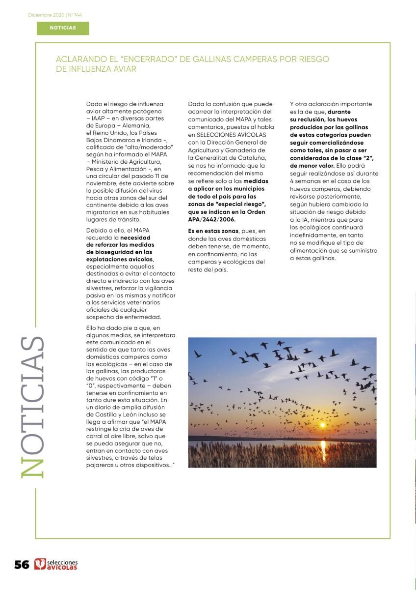 """Aclarando el """"encerrado"""" de gallinas camperas por riesgo de influenza aviar"""