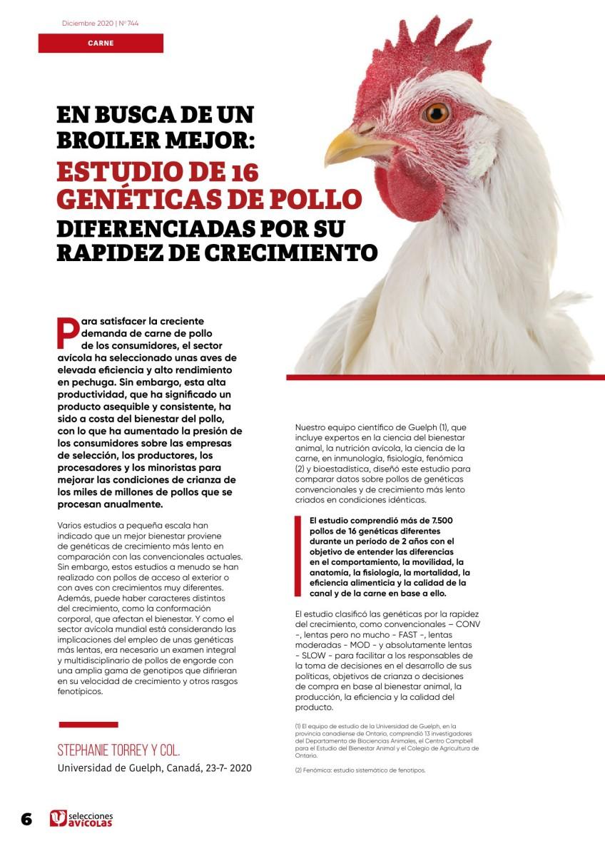 En busca de un broiler mejor: estudio de 16 genéticas de pollo diferenciadas por su rapidez de crecimiento.