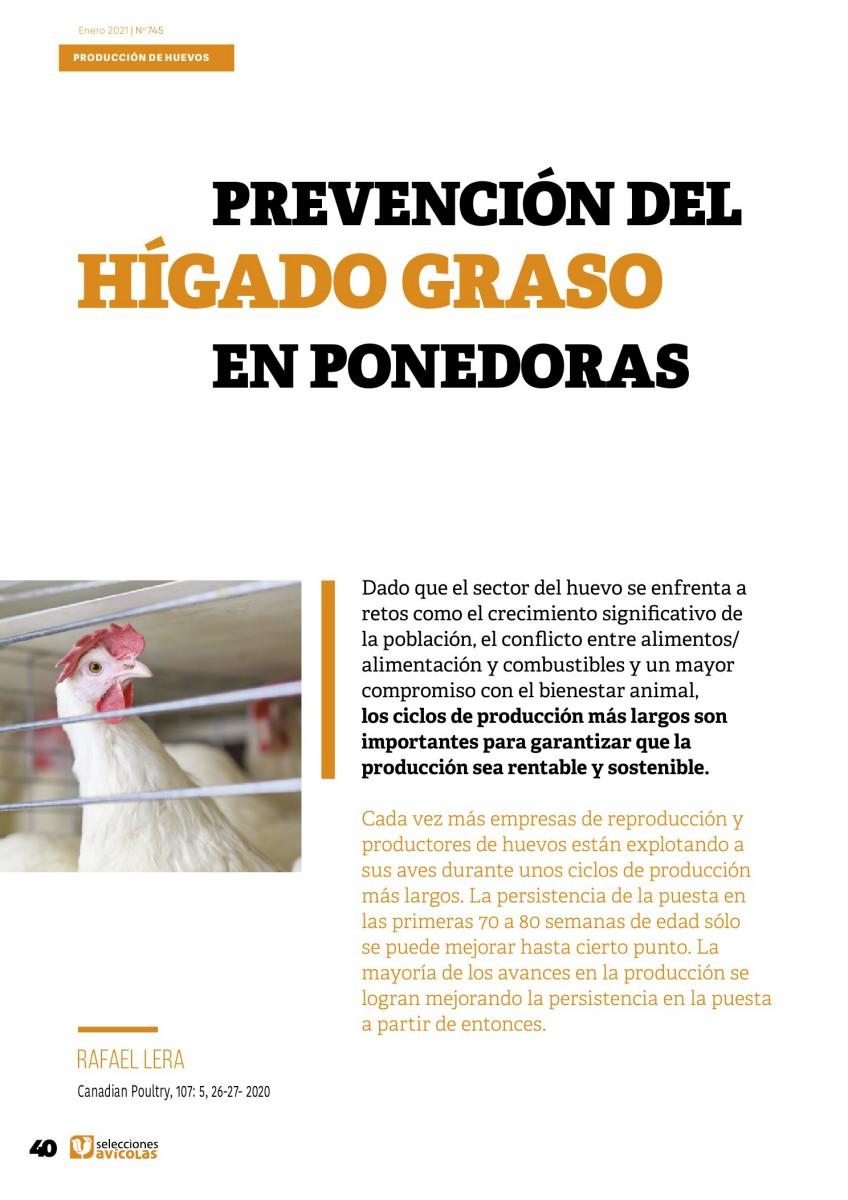 Prevención del hígado graso en ponedoras