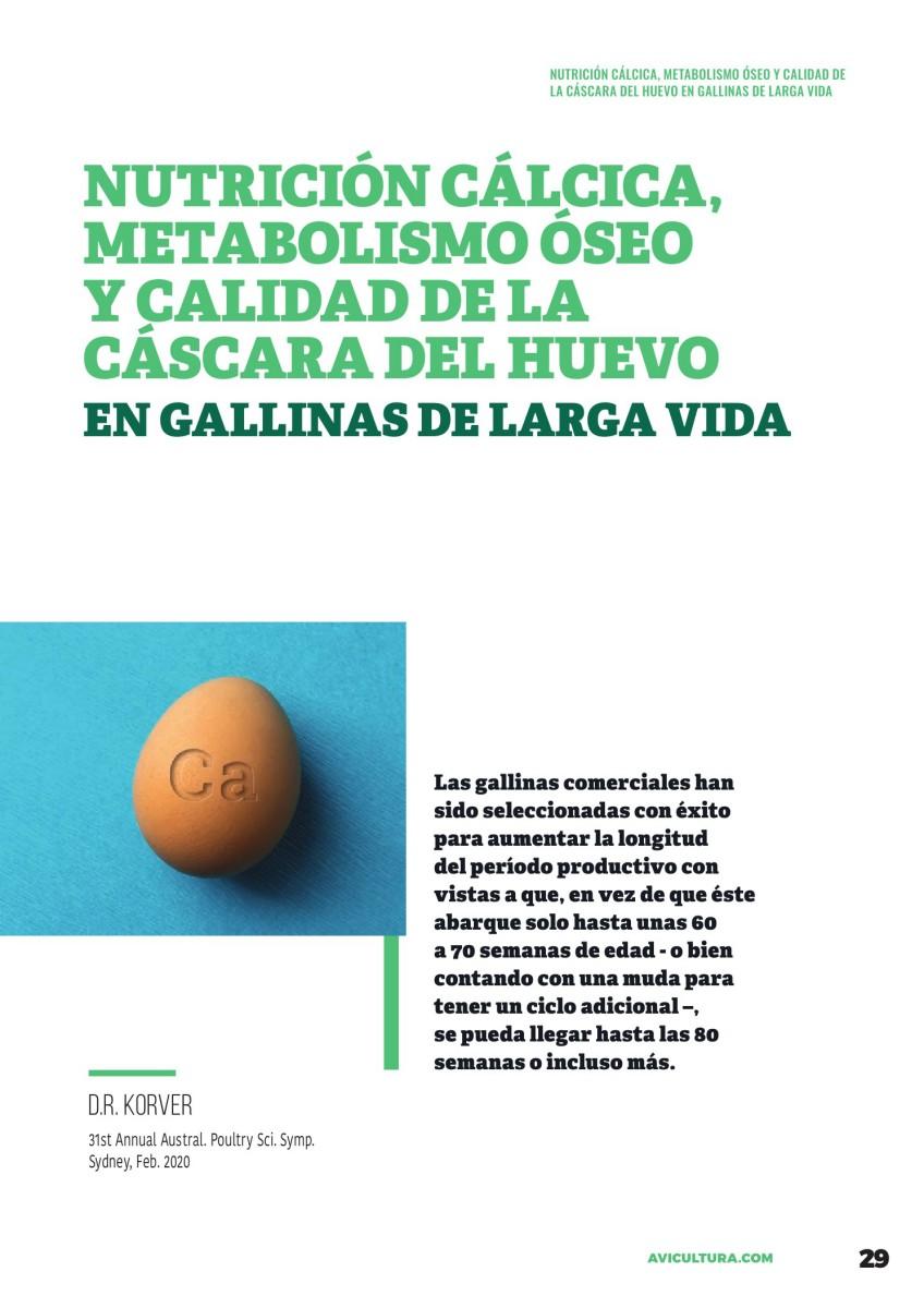 Nutrición cálcica, metabolismo óseo y calidad de la cáscara en gallinas de larga vida
