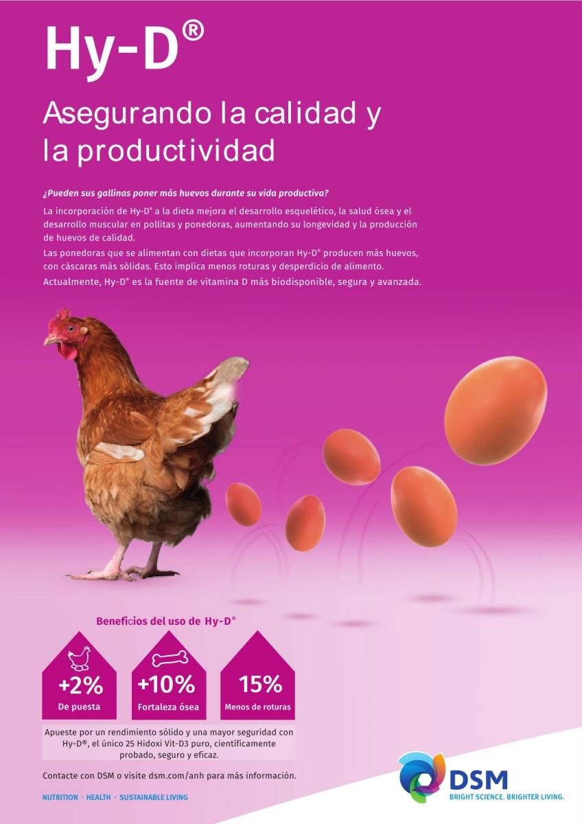 Ad DSM asegurando calidad y productividad