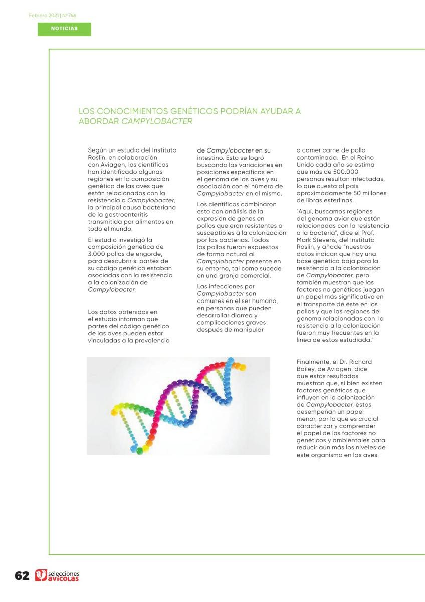 Los conocimientos genéticos podrían ayudar a abordar Campylobacter