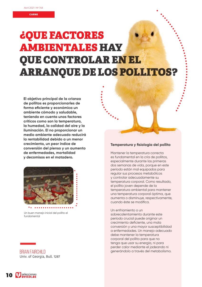 ¿Qué factores ambientales hay que controlar en el arranque de los pollitos?