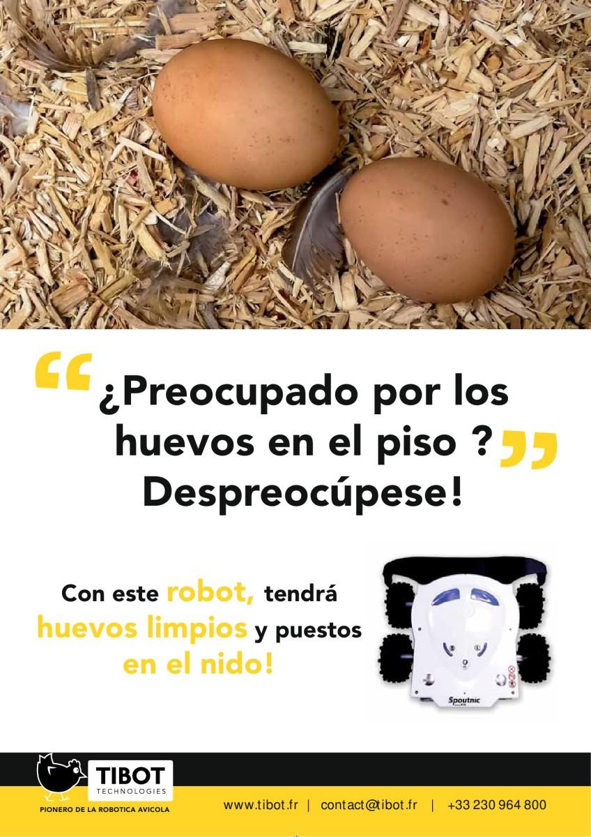 Ad TIBOT robotica avícola. Despreocúpese de los huevos en el suelo.