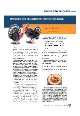 Producción de carne de pavo en España
