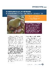 Maximizando la uniformidad, el rendimiento y la vitalidad de los pollitos