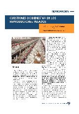 Cuestiones de bienestar en los reproductores pesados