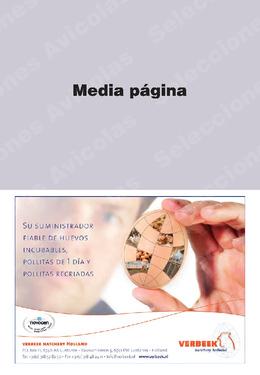 Ver PDF de la revista de Junio de 2013