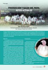 Producción y salud del pavo: retos actuales