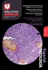 Revista de Febrero de 2015