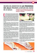 Mejora del bienestar de las ponedoras sin jaula: prevenir la rotura del hueso de la quilla