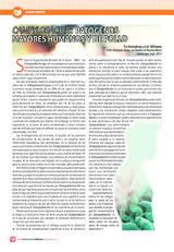 Campylobacter: patógenos mayores humanos y de pollo