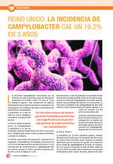 Reino Unido: la incidencia de Campylobacter cae un 19,2% en 3 años