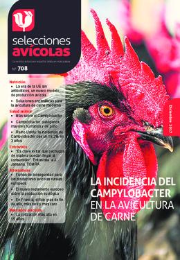 Revista de Diciembre de 2017