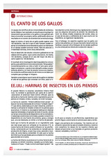 EE.UU.: HARINAS DE INSECTOS EN LOS PIENSOS