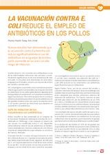 La vacunación contra e. Coli reduce el empleo de antibióticos en los pollos