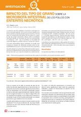 Impacto del tipo de grano sobre la microbiota intestinal de los pollos con enteritis necrótica
