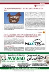 100 billones de aves han sido vacunadas con VAXXITEK® HVT+IBD des de su lanzamiento