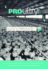 Publicidad PROultry.com