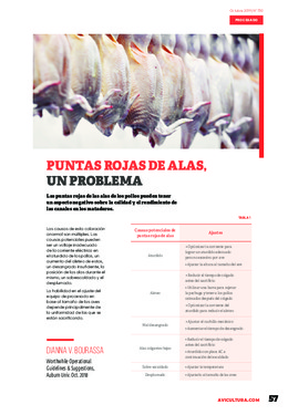 Ver PDF de la revista de Octubre de 2019