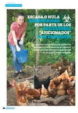 """Escasa o nula bioseguridad por parte de los avicultores """"aficionados"""" o de traspatio"""