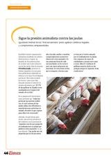 Situación sanitaria del sector en la UE: nuevos brotes de influenza aviar de alta patogenicidad en varios países