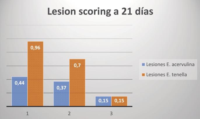 Lesion_score_opt.jpeg