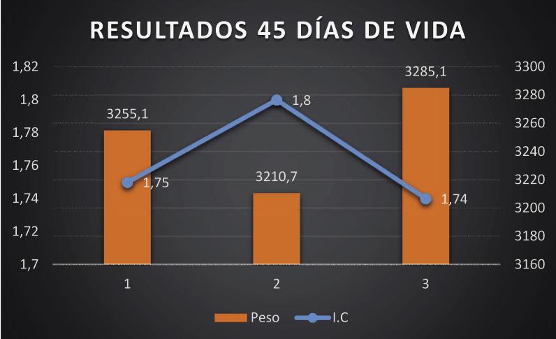 Resultados_45dias_opt.jpeg