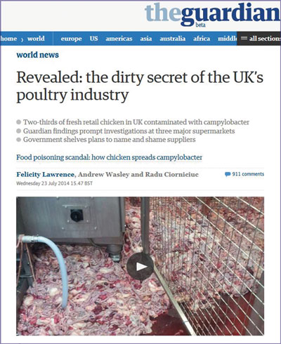 the_guardian_dirty_poultry_20140723.jpg
