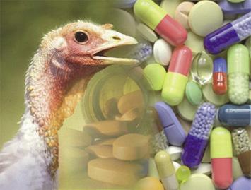 pavos_vitaminas_opt.jpeg