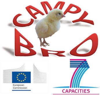 CAMPYBRO_fmt.png