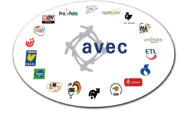 Logo_AVEC_partners_big_fmt.png