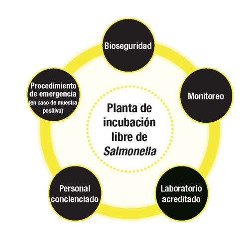 Bioseguridad__Pag_3.jpg