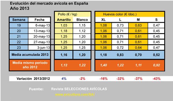 mercado_y_precios_del_pollo_y_huevos_en_espana_Ano2013.jpg