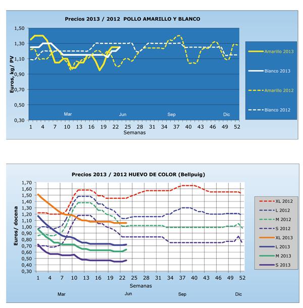 mercado_y_precios_del_pollo_y_huevos_en_espana_grafico_mensual_Ano2013_2012.jpg