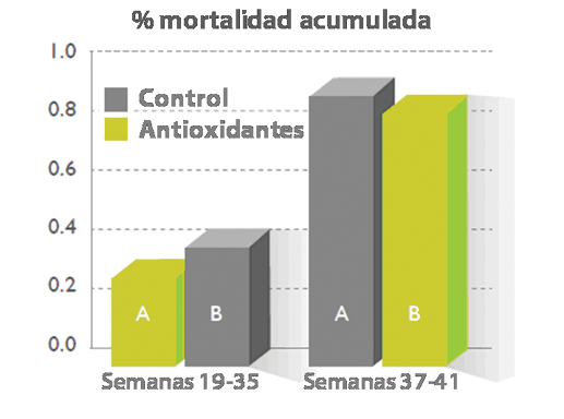 Figura_5._Porcentaje_de_fmt.png