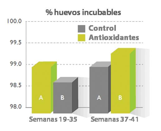 Figura_7._Porcentaje_de_fmt.png